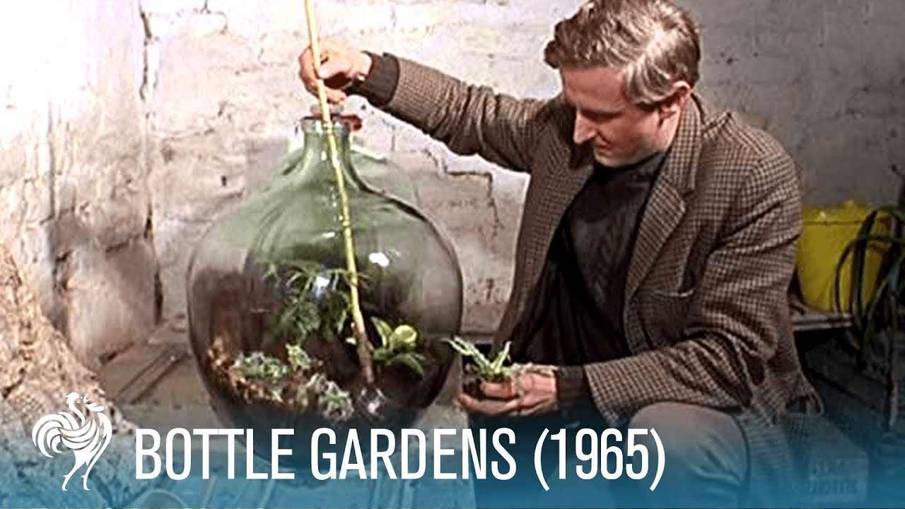 Britishpathé History Garden