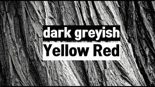 [조색 가이드] KS 컬러 YELLOW RED dkgy…