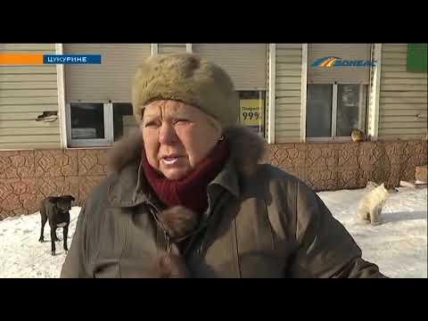 Телеканал Донбасс: Почему асфальт тает вместе со снегом?