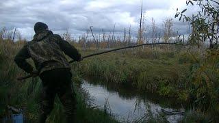 Рыбалка на Паук! Подъёмник в Маленькой Болотной Речке! Паук нас не Подвёл!