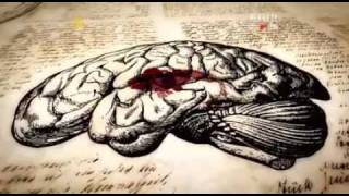 Uzdrowić Umysł 2011