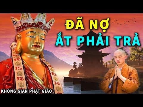 Đêm Khuya Khó Ngủ Nghe Những Câu Chuyện Phật Giáo Nhân Quả Giúp Tĩnh Tâm Ngủ Ngon Ngủ Sâu