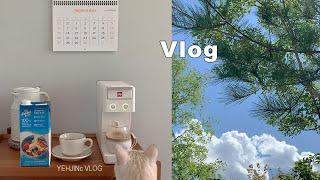 [Vlog] 고양이랑 날씨가 다 한 브이로그, 일리커피…