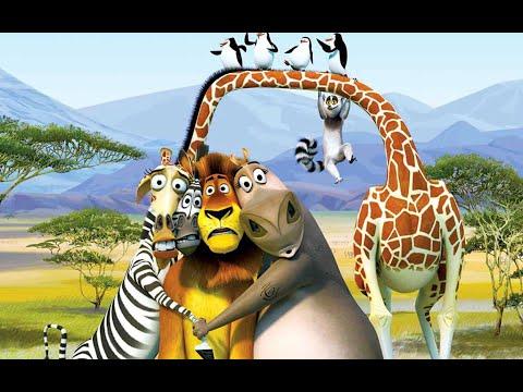 Durbaj #6 The Fight Pro Madagascar
