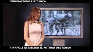 Prof. B. Siciliano intervista per Il DenaroTV - 12 Jun 2009