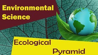 | Ecological pyramid | - Environmental Science