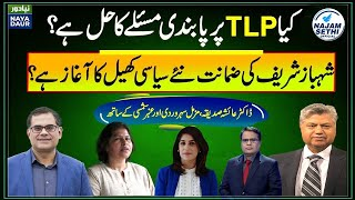 Is the ban on TLP real? | Will Shehbaz reunite PDM? | Naya Daur | Najam Sethi Official