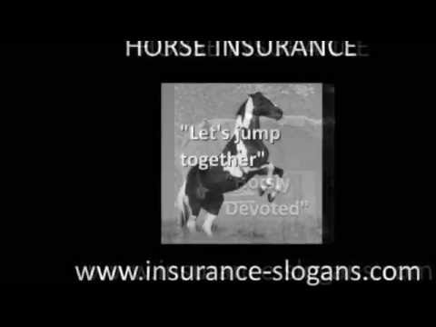 Horse Insurance Slogans and Equine Taglines - YouTube