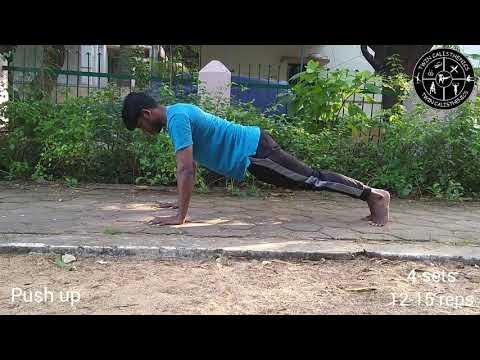Bodyweight training daily circuit calisthenics | Twin Calisthenics