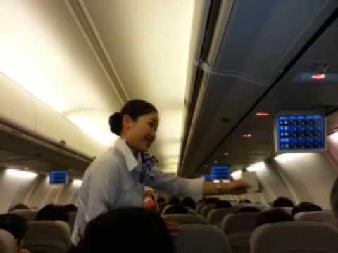 japanese stewardess Beautiful