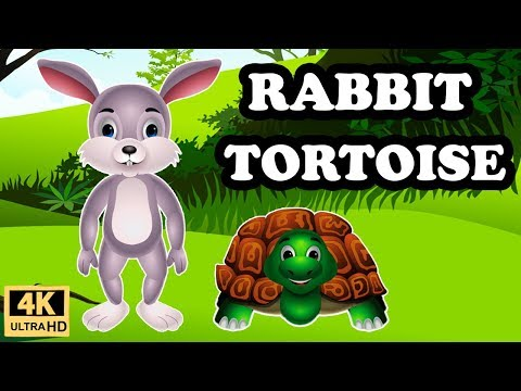 Rabbit And Tortoise Story In English | Moral Stories For Kids | Bedtime Stories For Children