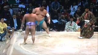 平成28年大相撲九州場所 11月21日 Sumo -Kyushu Basho.