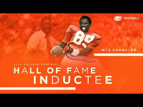 Wes Chandler: 2015 College Football Hall of Fame Inductee