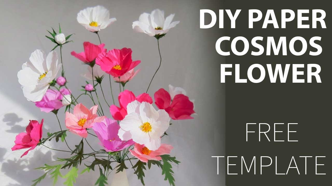 FREE Template How To DIY Paper Cosmos Flower YouTube
