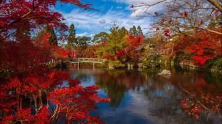 Bookmarks from Japan (Mvt 1-6) - Julie Giroux