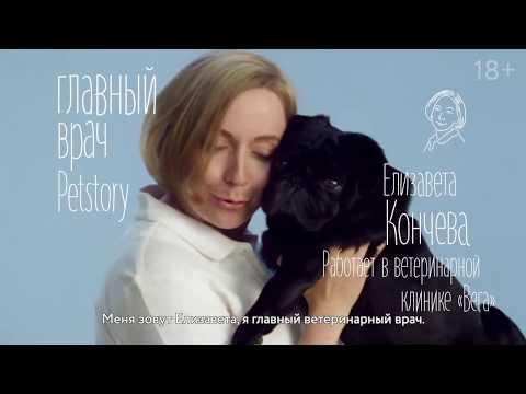 Елизавета Кончева, главный ветеринарный врач Petstory