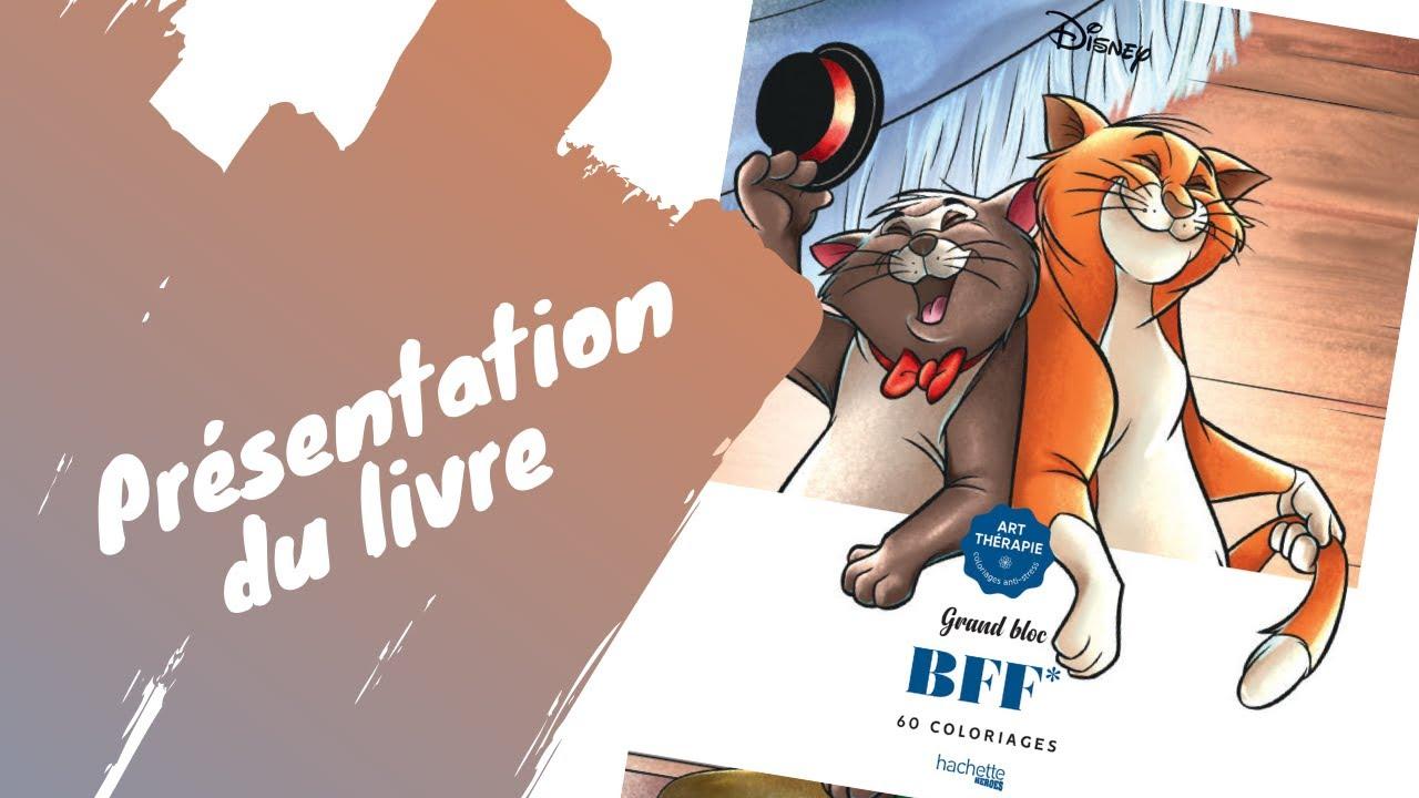 Bloc BFF - coloriages Disney - Hachette Heroes