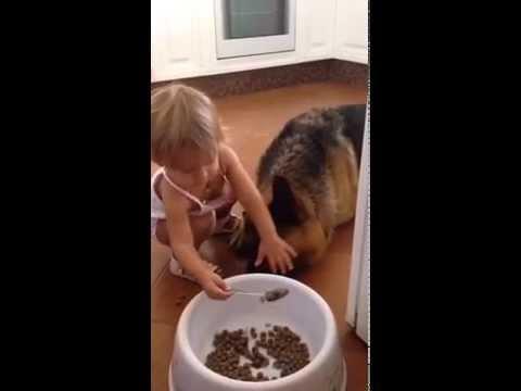 Ella le da de comer a su perro con una cuchara en la boca