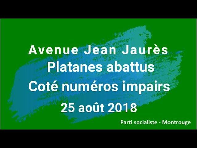 Montrouge, Avenue Jean Jaurès - 25 août, Platanes abattus côté numéros impairs