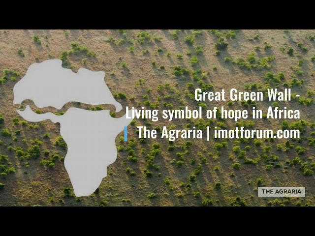 Great Green Wall of #Africa | All You need to know