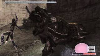 Shadow of the Colossus: Walkthrough - Part 10 [Colossus 11] - Celosia (SotC Gameplay & Commentary)