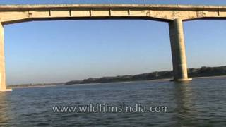 Bridge over the river Chambal
