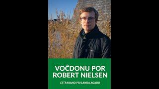 Robert Nielsen, Kandidato por la Estraro de TEJO, respondas al demandoj