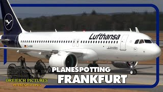 Planespotting Frankfurt Airport | August 2018 | Teil 1