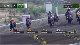Vidéo de la course PMU PREMIO GRAN GRUNON