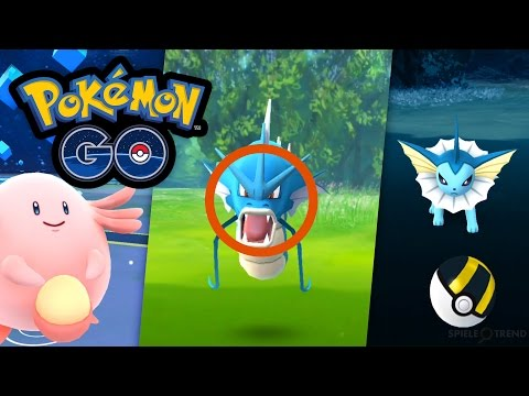 So muss man seltene Pokémon fangen (Chaneira, Garados, Aquana)   Let's Play Pokémon GO #039