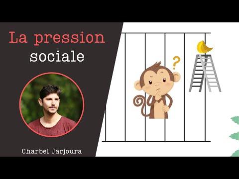 Comprendre la pression sociale