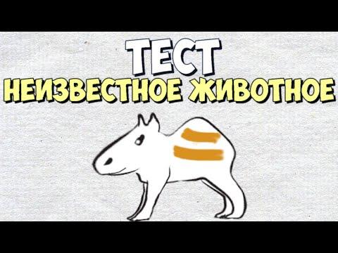 """Рисуночный Тест : """"Неизвестное животное"""""""