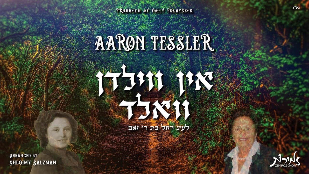 In Vilden Vald - Aaron Tessler feat Zemiros Choir | אין ווילדן וואלד - אהרן טעסלער - מקהלת זמירות