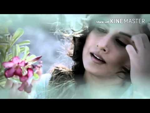 Hamari Adhuri Kahani Instrumental Cover