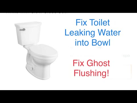Toilet Leaking - Ghost Flushing FIX! EASY! American Standard Champion Four Toilet