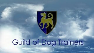 Godt  Dog Training   Guild Of Dog Trainers   Courses