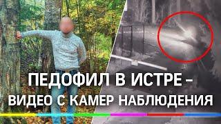 Педофил в Истре видео с камер наблюдения Эксклюзив 360