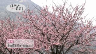 2015陽明山花季30秒影片