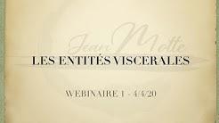 Les ben shen /Entités viscérales - Webinar animé par Jean Motte