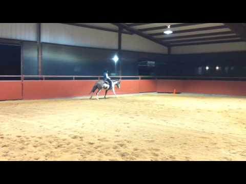 Transition from the walk to the canter in a wester
