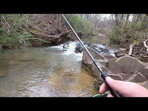 Fishing And Exploring In South Carolina