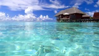 The Maldives photo Мальдивы фото Мальдивы отдых(, 2015-10-06T10:34:16.000Z)