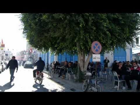 TUNISIA 2011: TUNISI - KAIROUAN - SBEITLA تونس