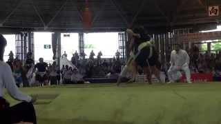 Чемпионат мира по Сумо 2015 г.Осака,Япония. ( UKR vs POL) БЕРЕЗА МОЛОДЕЦ