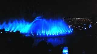 Disneyland California Adventure Show de Luz