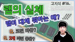 RAM 램의 이중성(feat. 메모리 계층) 램의 특징…