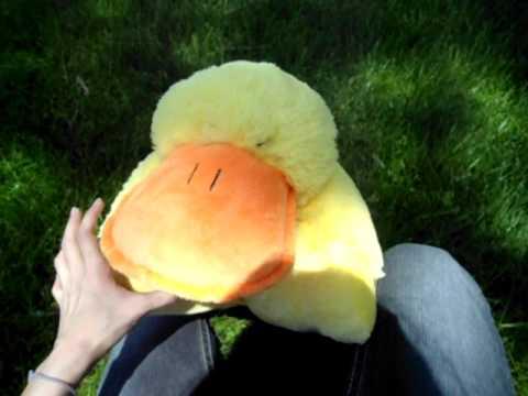 Duck Pillow Pet Youtube