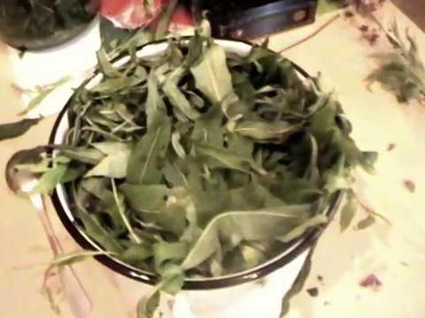 видео иван чай