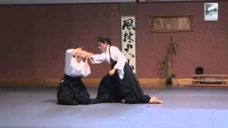 Suwari waza, 3 attaquants et aikitaijutsu ● Kobayashi Ryu Aikido