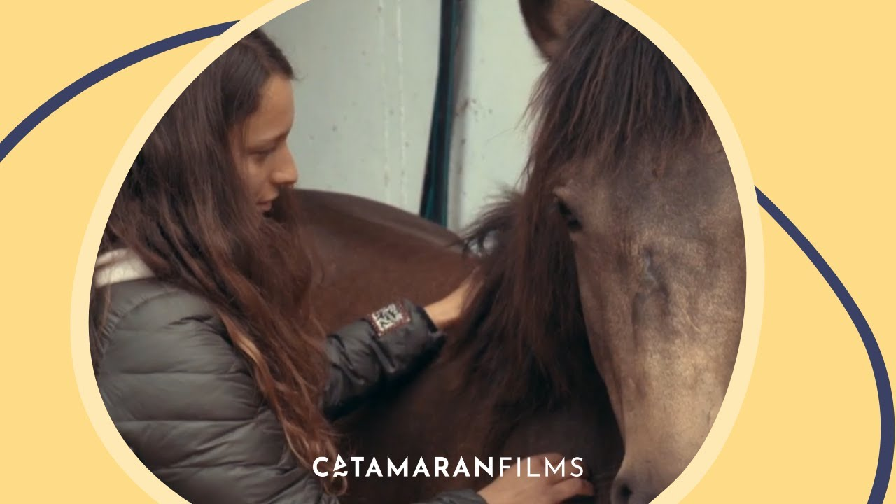 Aus Liebe Zum Mustang